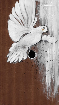 colombe illustration
