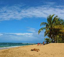 The-best-caribbean-3.jpg