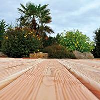 Protac terrasse bois