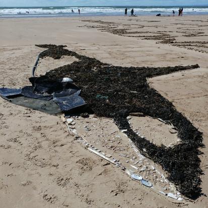 Orca beach art
