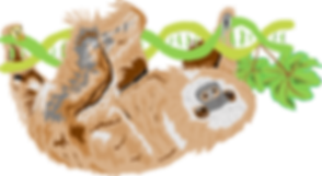 Sloth_SloCo.png