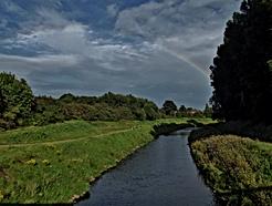 Micker Brook 1.png