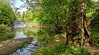 Micker Brook.png