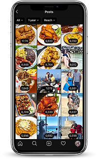 iphone mockup - reach.png