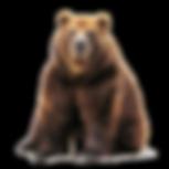 bear-emx.png