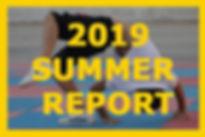 Visit 2019 summer report.jpg