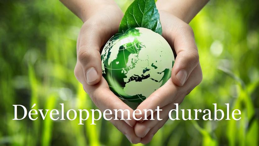 332757-engagement-ecologique-des-entreprises-encore-quelques-efforts-web-tete-060215585720