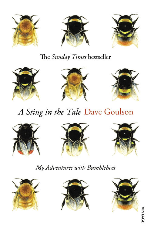Sting in the Tale       by Dave Goulson