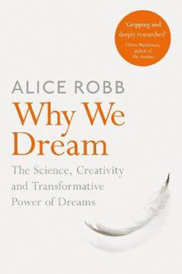Why We Dream       by Alice Robb