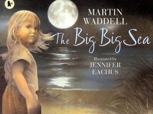 Big Big Sea       by Martin Waddell
