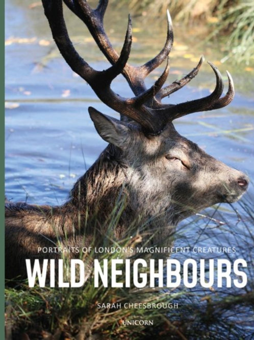 Wild Neighbours by Sarah Cheesbrough