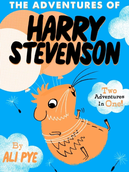 Adventures of Harry Stevenson by Ali Pye