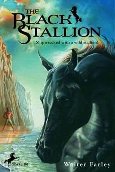 Black Stallion       by Walter Farley