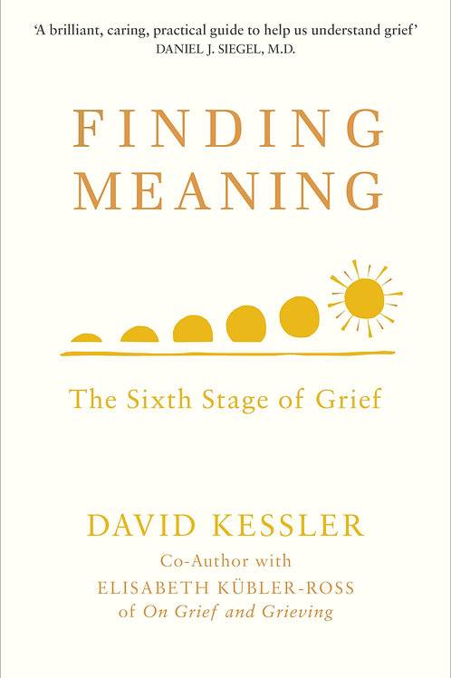 Finding Meaning       by David Kessler