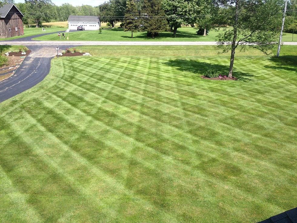striped-lawn.jpg