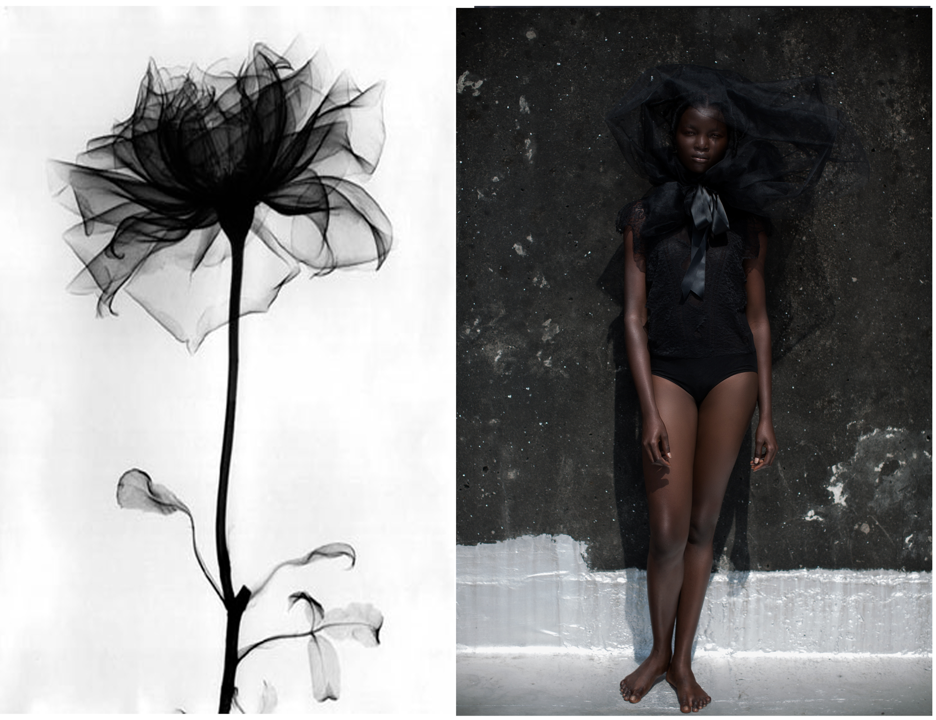 Fairyopolis--Flowerstories-from-Lagos