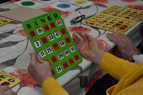Bingo Carte.JPG