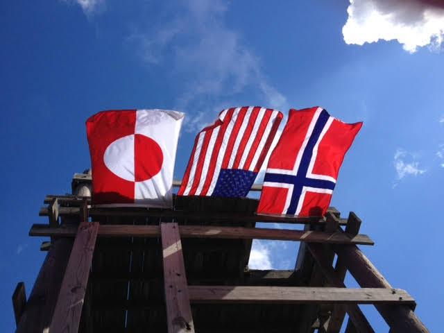 robins flag photo