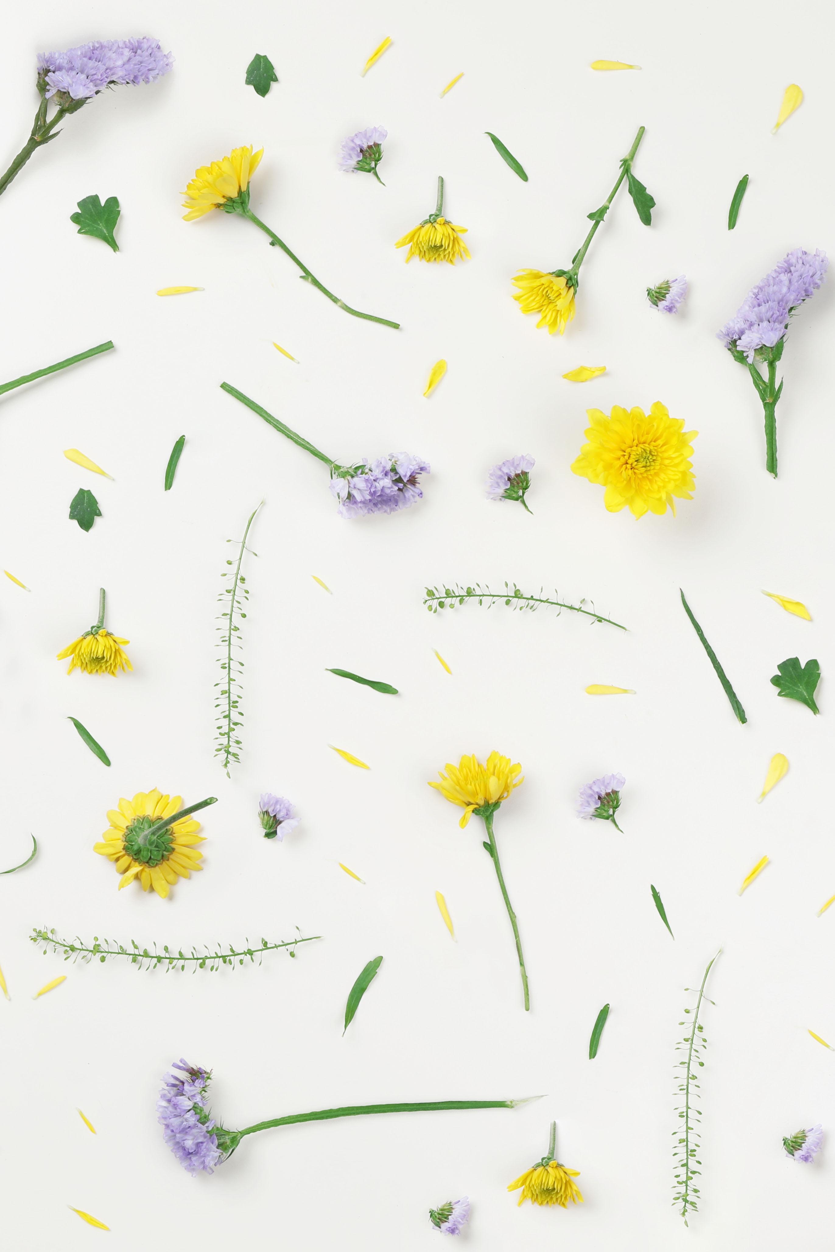 Gelbe und lila Blumen