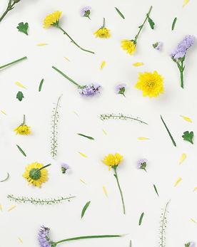 Fleurs jaunes et violettes