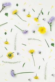 黄色と紫色の花