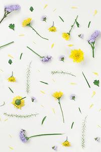Amarillas y las flores púrpuras