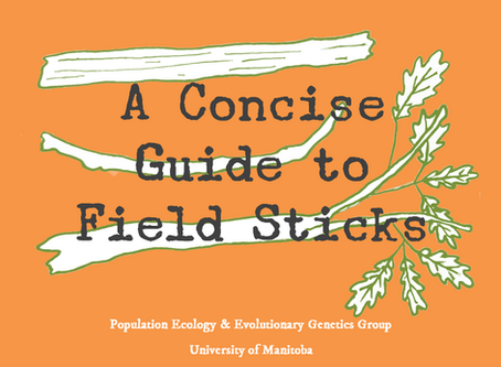 First squirrel study pub! A Concise Guide to Field Sticks