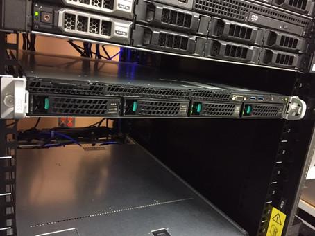 Rare server sighting in its natural habitat