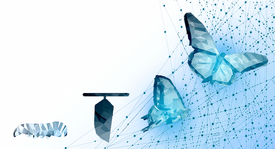 digital-transformation-1024x554.png
