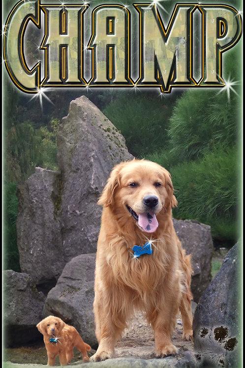 Champ Poster