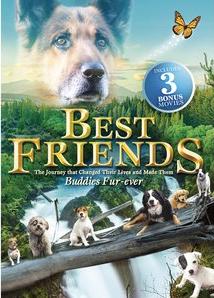 Best Friends Cover Echo Bridge.jpg
