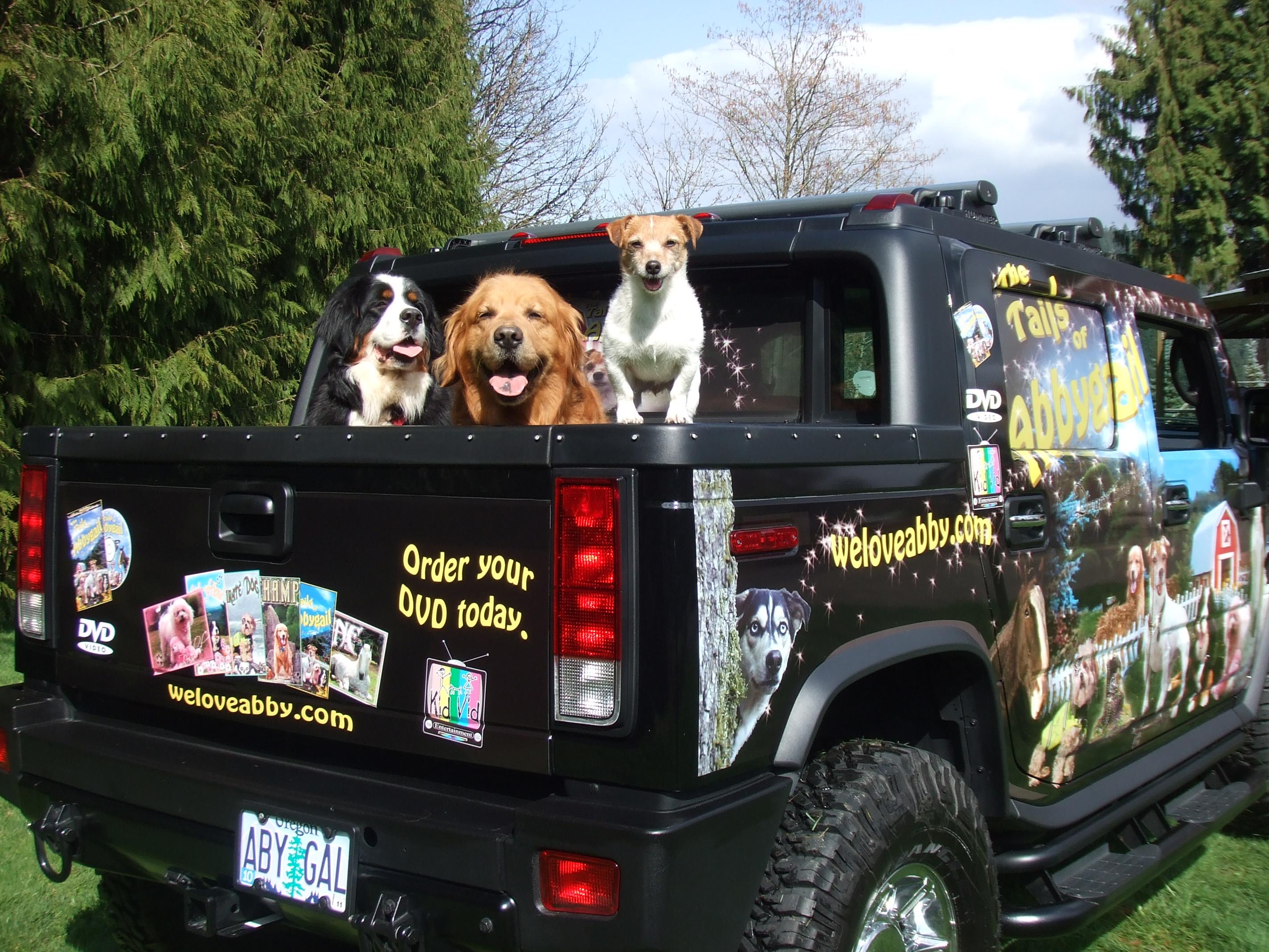 Dogs in H2.jpg
