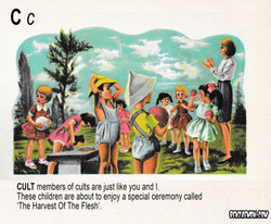 PICTURE DICTIONARY CULT