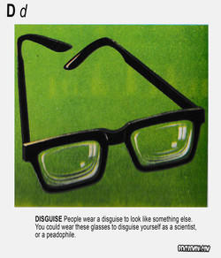 PICTURE DICTIONARY DISGUISE