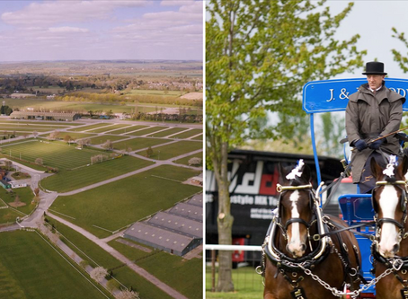National Shire Horse Show 2021
