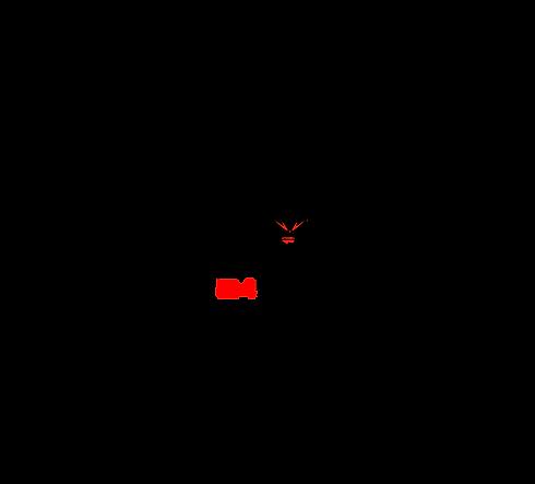 LogoChico2-01.png