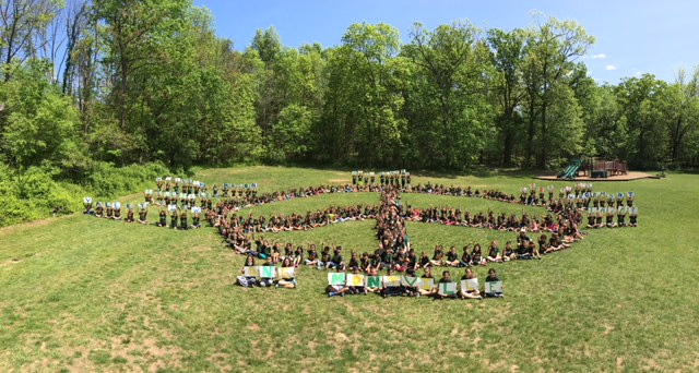 Hilldale Peace Sign