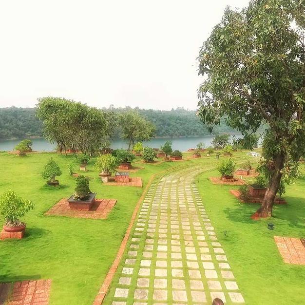 Path Leading through the Beautiful Bonsai Gardens