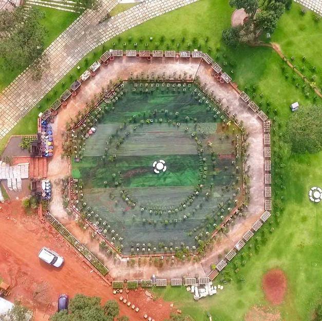 Construction in the Bonsai Garden Area