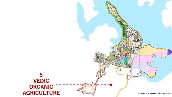 Slide6-organic-agriculture.jpg