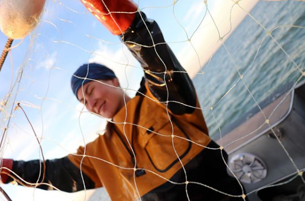bristol bay deckhand checks gillnet