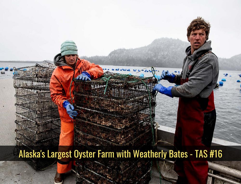 glacier point oyster alaska shellfish mussel farm greg and weatherly bates