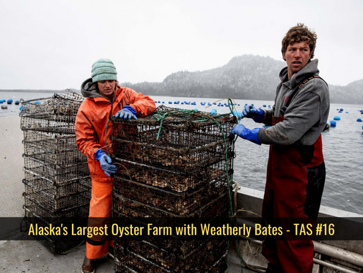 Alaska's Largest Oyster Farm with Weatherly Bates - TAS #16