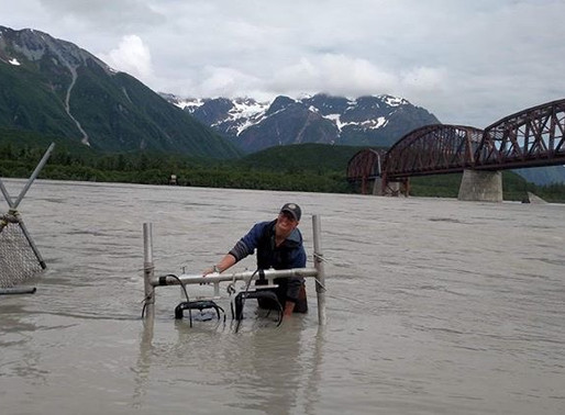 How to Be a Fish and Wildlife Technician in Alaska