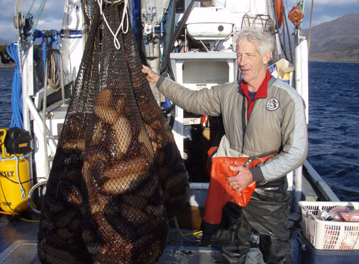 "Is All Alaska Fishing like ""The Deadliest Catch?"" - Alaska Tourist FAQs"