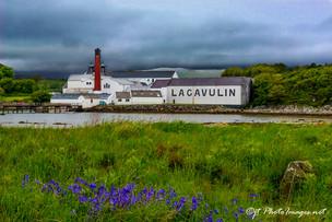 Lagavulin Distillery #1 ISLAY Scotland-Photograph