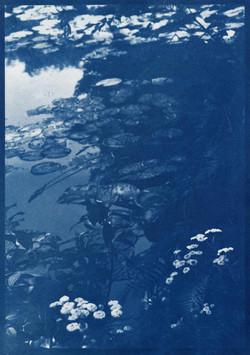 Giverny En Bleu