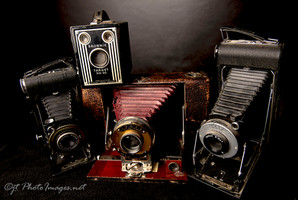 War Horses (Old Cameras) Photograph