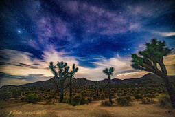 Sunset & Stars Joshua Tree National Park-Photograph