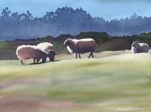 Samantha_McNally_Watercolor_HM_Clint_Eas